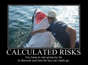 You don't have to pet a great white to take a risk.