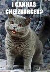i-can-has-cheezburger